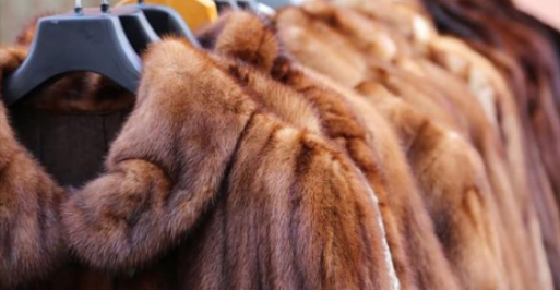 THE YOOX NET-A-PORTER GROUP GOES FUR FREE