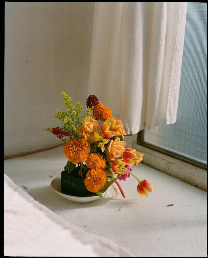 Matagalan Plantae Carolina Spencer Interview